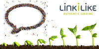 Marketing mithilfe Content Seeding in