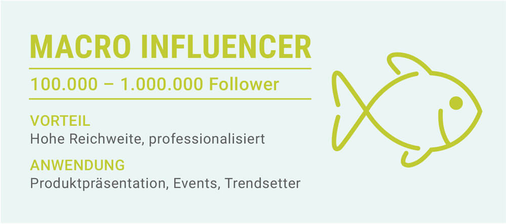 Macro Influencer: 100.000 - 1.000.000 Follower