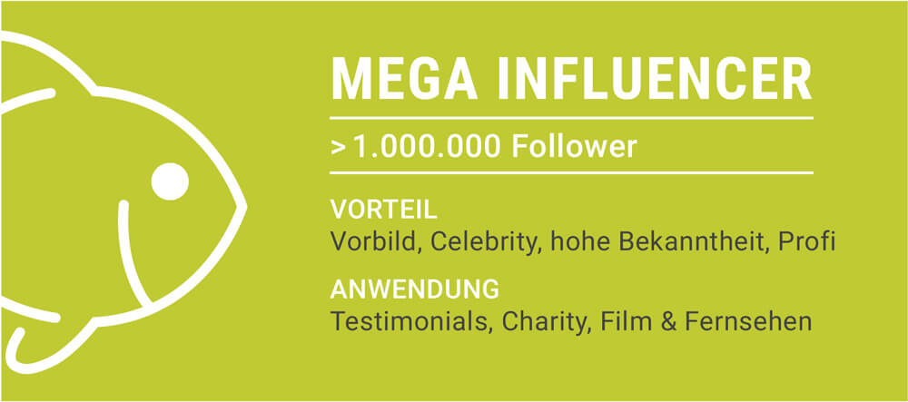 Mega Influencer: ab 1.000.000 Follower