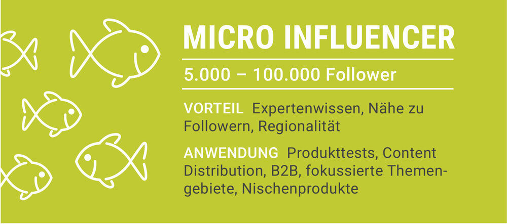 Micro Influencer: 5.000 - 100.000 Follower